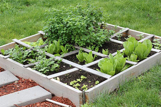 Charmant Growing Bed Sizes Are Around 16ft X 10ft In An Ideal Situation. If You Have  This Space In Your Garden All Is Well And Good.